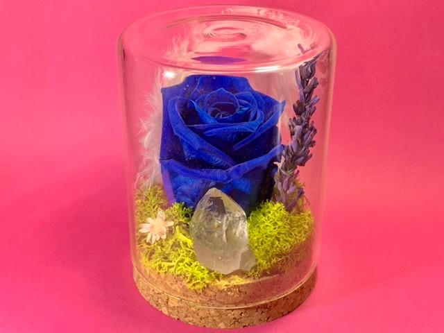 crystal-garden-medio